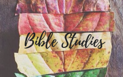 Seeking Transformation Bible Studies