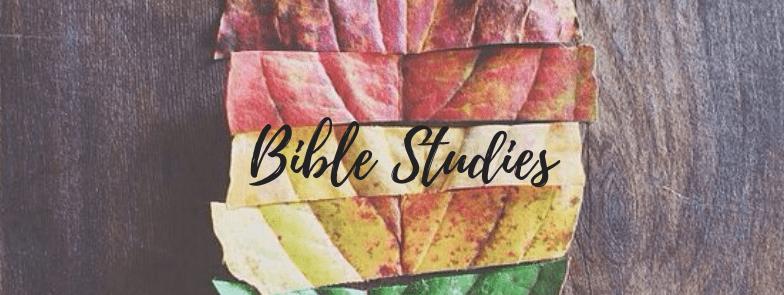 Seeking Transformation Bible Studies