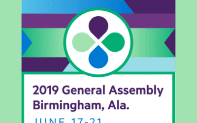 Birmingham Reflections  by Terry Maples, CBFVA Coordinator